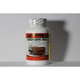 Cordyceps 950 USDA Organic